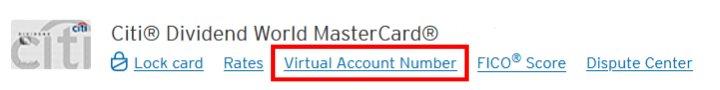 Citi Virtual Account Link